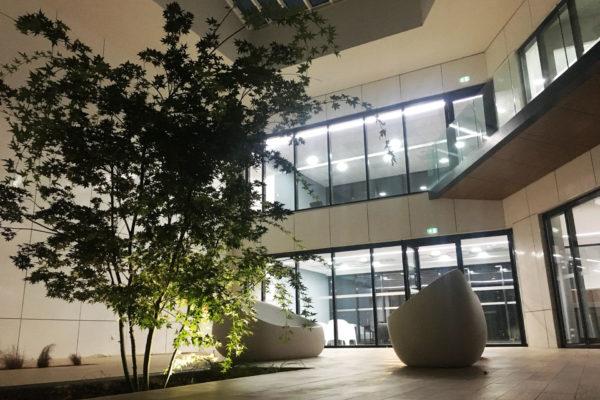 patio nuit arbre
